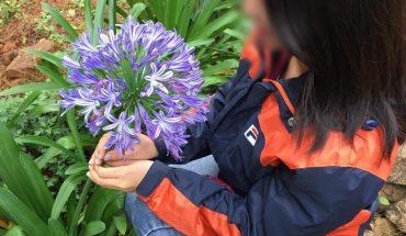Dù đã được nhắc nhở, cặp đôi vẫn cố tình cắt trộm hoa trên đường vào Ma Rừng lữ quán