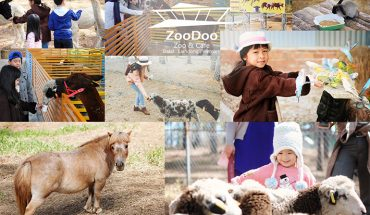 Tour tham quan sở thú ZooDoo giá rẻ nhất ở Đà Lạt