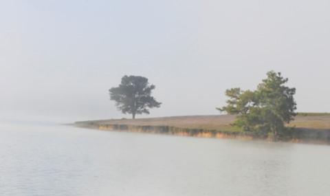 Để lại thư tuyệt mệnh bên cây thông cô đơn nam thanh niên tự tử ở Đà Lạt