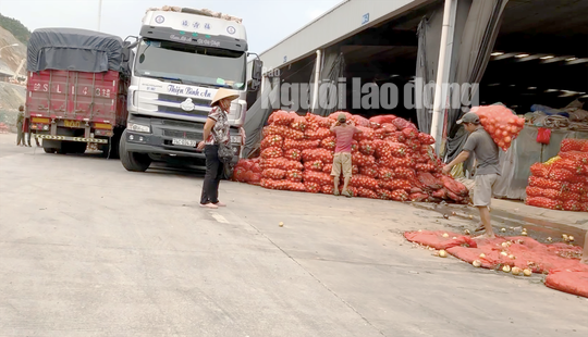 Nông sản Trung Quốc hồ biến thành nông sản Đà Lạt