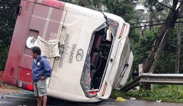 31 hành khách thoát chết khi xe Thành Bưởi lật vì tránh cây đổ