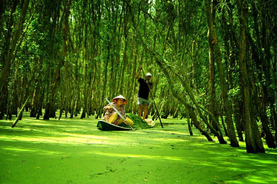 Tour Đà Lạt - Miền tây 5 ngày 4 đêm giá rẻ cùng Hoa Dalat Travel