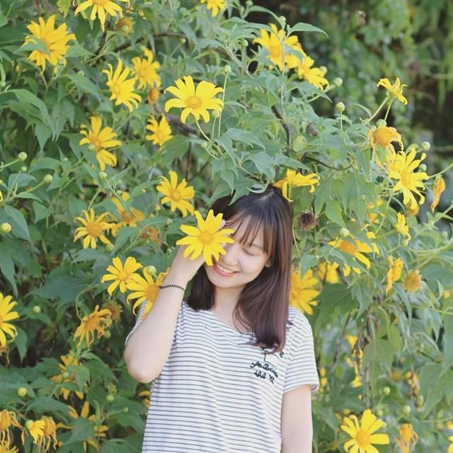 Tour cỏ hồng - hoa dã quỳ và những điểm tham quan mới ở Đà Lạt